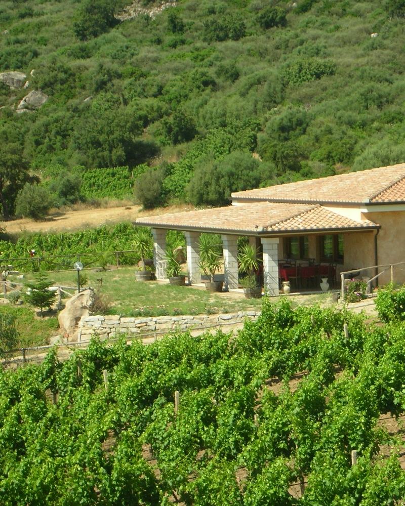 Large garden Agriturismo Su Solianu