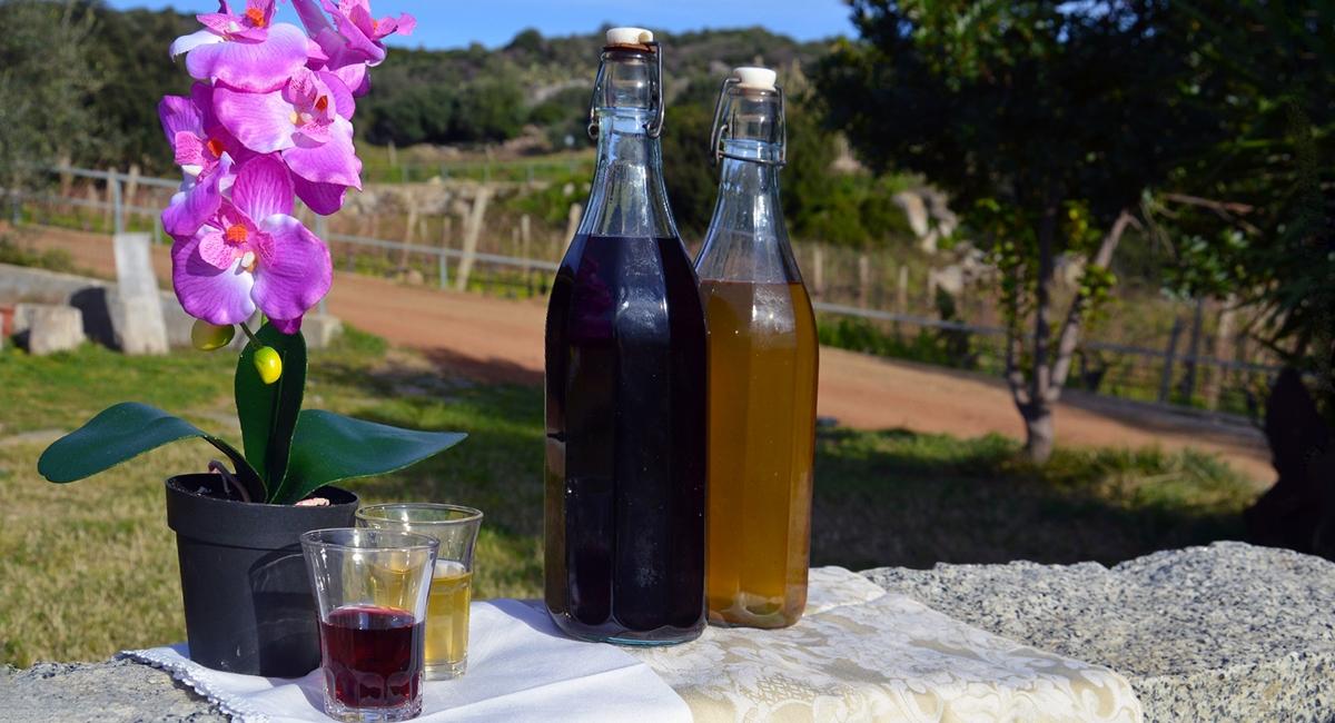 Our wines Agriturismo Su Solianu